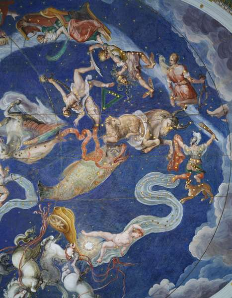 detail of pisces in zodiac ceiling