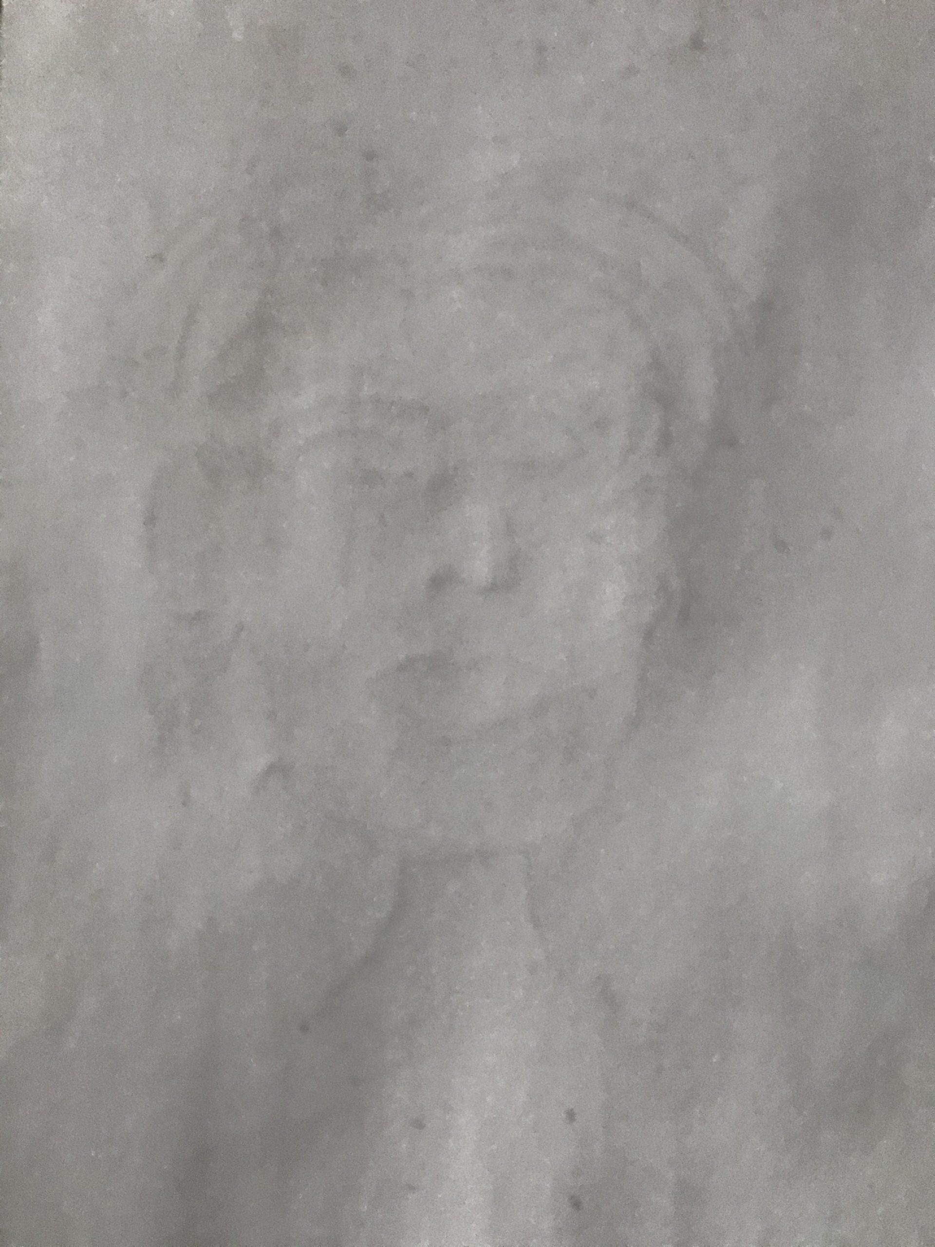 Self-portrait Lynne Hanley mercifully erased