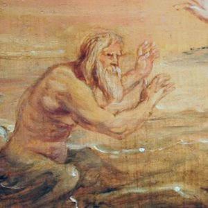 Glaucus Rubens